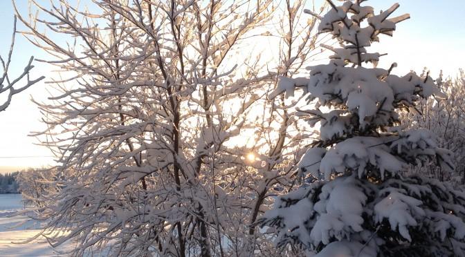 Nästa gudstjänst – Nyårsbön