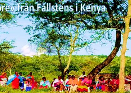 Nyhetsbrev från Fållstens i Kenya